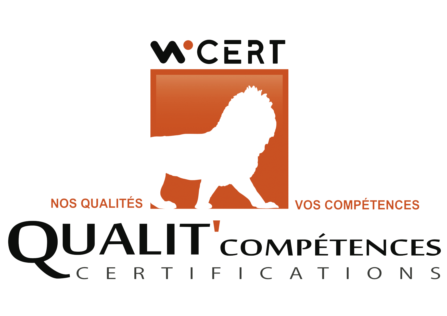 Certification diagnostiqueur immobilier Wi cert - Emmanuel RAGUENEAU - Challans